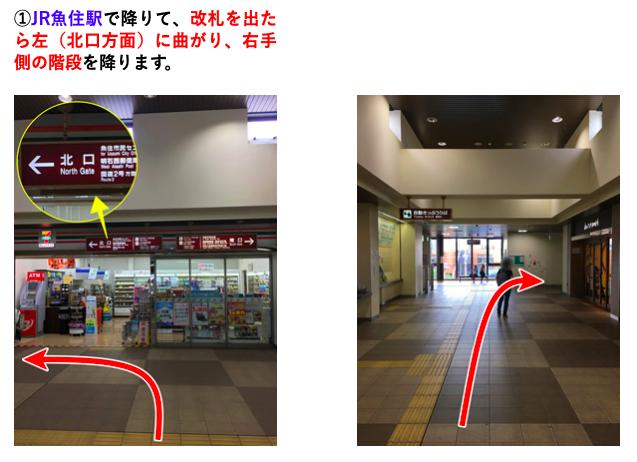 [kuniya-seikotsu.com][548]map5-12